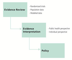 Figure 1: Influence of evidence and interpretation on policy creation
