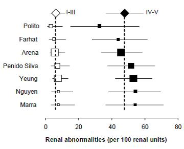 Figure 4. Forest plots of renal cortical abnormality rates by reflux grade