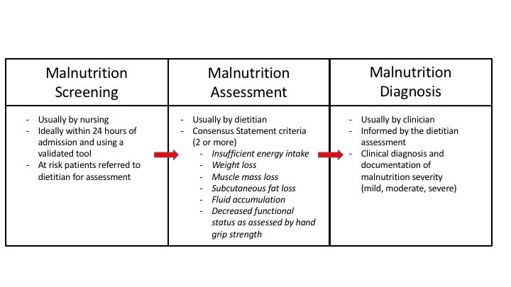 Processes Leading to Malnutrition Intervention