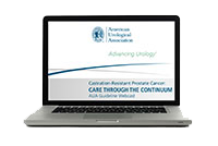 Castration-Resistant Prostate Cancer: Care Through the Continuum Webcast