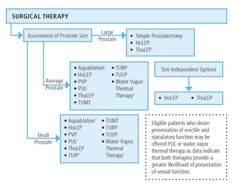 Figure 5. Surgical Management of Lower Urinary Tract Symptoms Attributed to Benign Prostatic Hyperplasia Algorithm